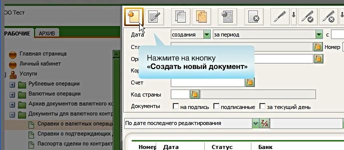 Справки о валютных операциях